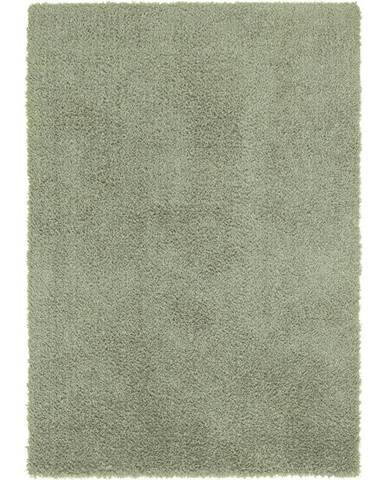 Shaggy Koberec Stefan 3, 160/230cm, Zelená