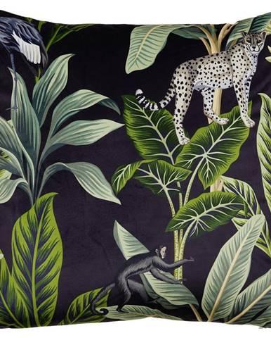 Dekorační Polštář Junglelife, 60/60cm, Černá