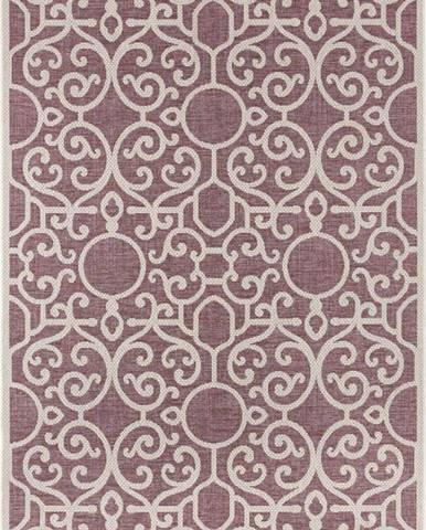 Fialovo-béžový venkovní koberec Bougari Nebo, 70 x 140 cm