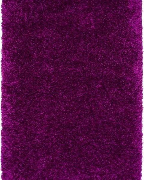Universal Fialový koberec Universal Aqua Liso, 100x150cm