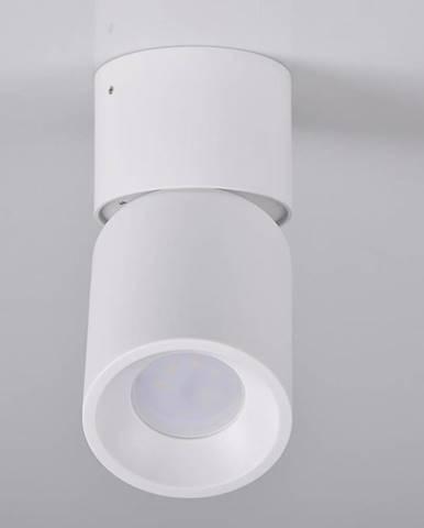 Svitidlo Nixa 314239 bílý GU10 LW1