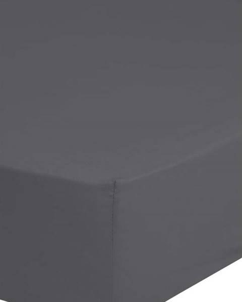 HIP Šedé elastické prostěradlo z bavlněného saténu HIP,180x200cm