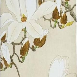 Běhoun Velvet Atelier Bird, 55 x 135 cm