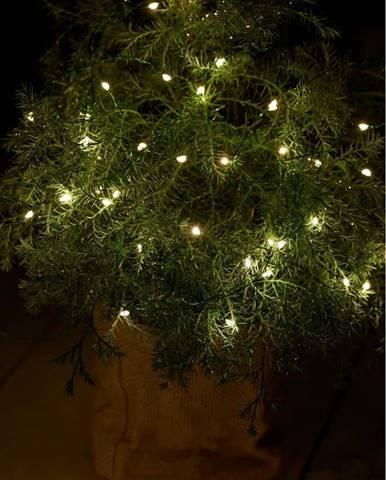 Světelný LED řetěz Sirius Knirke Green, délka 3,9 m