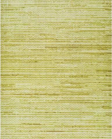 Zelený venkovní koberec Universal Vision, 160 x 230 cm